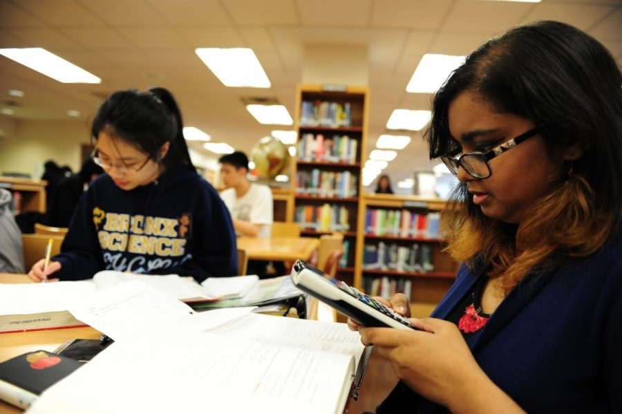 Shamira Talukder '17 and Keena Wong '17 completing math homework in the library.