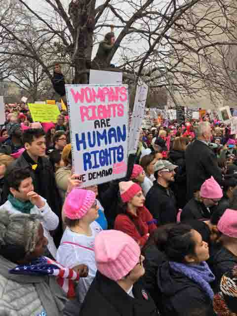 Protestors rally together during the Women's March on Washington.