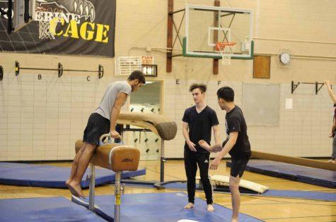 Boys' Gymnastics Gets a Makeover for the Winter 2016-2017 Season