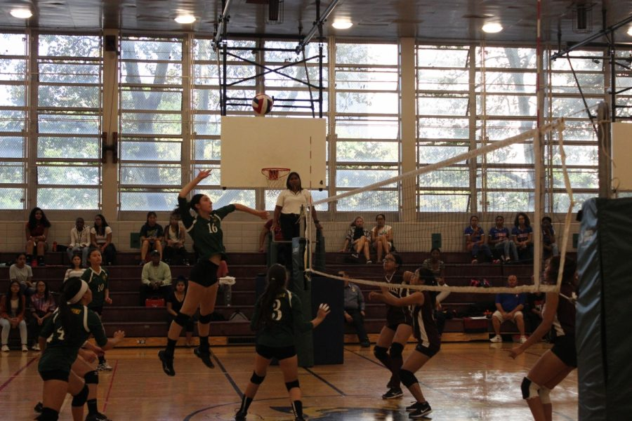 Audra Berg '18 jumping high and spiking on the opposing team.