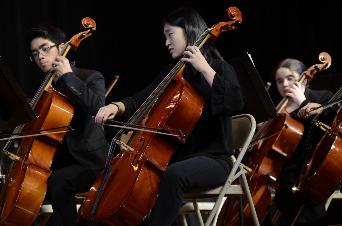 Cellists from the Orchestra play together in harmony.