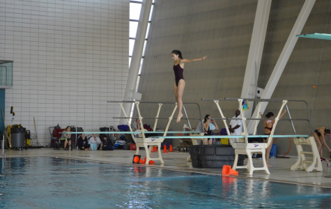 Renee Su '18 practicing for an upcoming diving competition.