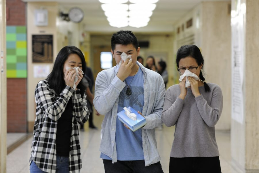 Cassie Tian '19, Gene Lam '18, and Tsering Sherpa '18 brace for the battle that is allergy season.