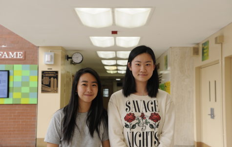 Cassie Tian '19 and Liyuan Wang '19 give their opinions on the staggering suicide rates of physicians.