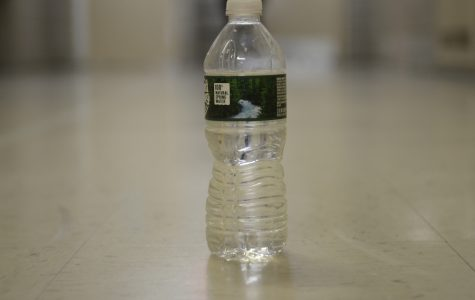 Plastic bottles like this may one day be replaced by a biodegradable derivative of chitin called chitosan.
