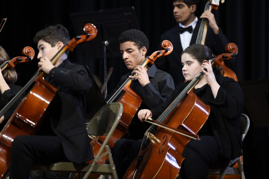 """""""I would say that being in orchestra has helped me become a more well rounded person. Lots of classes I take are very analytical and STEM related but orchestra allows me to develop my more artistic side,"""" said Alexander Warren '19 (center)."""