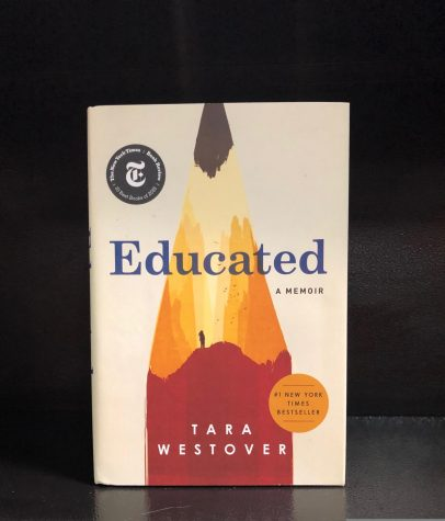 Interesting, Insightful, Inspiring: The Fascinating Story of Tara Westover
