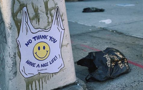 """Artist Inphltrate depicts a plastic bag that reads """"no thank you"""" on the streets of Brooklyn, contradicting the trademark takeout bags that read, """"thank you."""""""