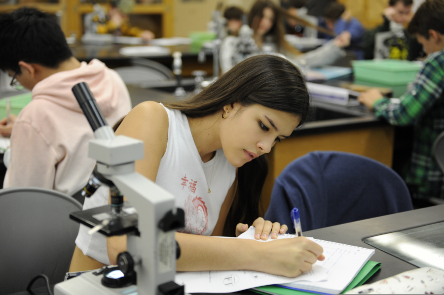 Students are hard at work in an AP Biology lab.