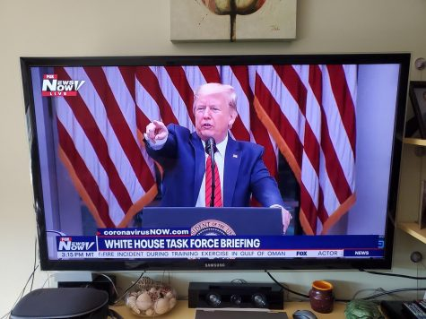 President Trump points to a reporter during one of his Coronavirus press briefings.