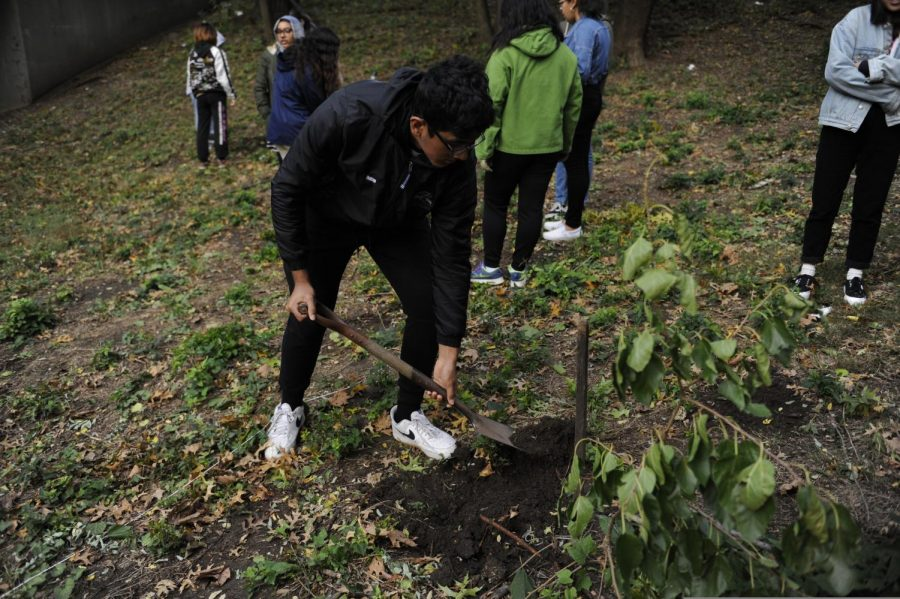 In Horticulture, students get the opportunity to plant trees on the school's campus.