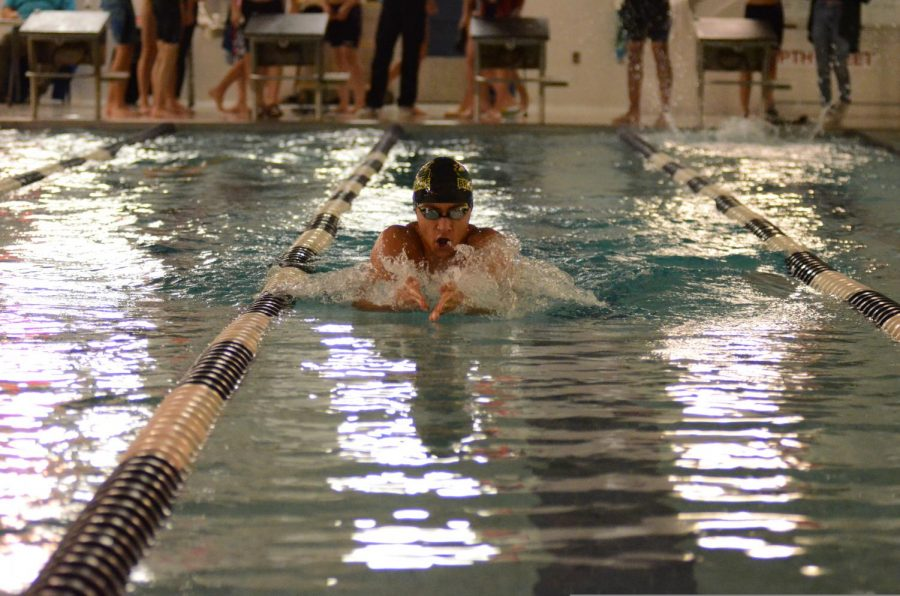 A member of the Boys' Varsity Swimming team at a practice!