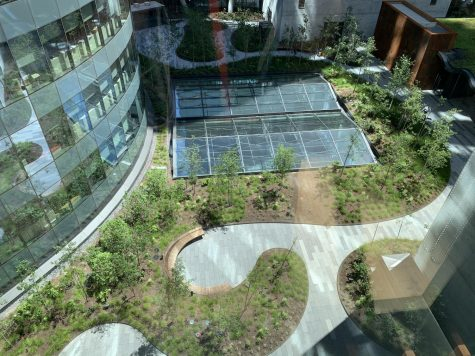 There is a communal courtyard for the companies working in the building, available for use once the Coronavirus pandemic restrictions are lifted.