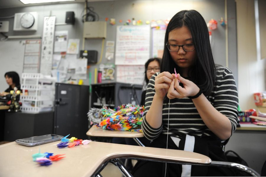 A student in Japanese Culture Club constructs origami cranes.