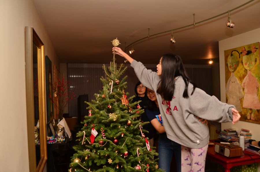 Buying and decorating a real tree is  my favorite Christmas tradition. Here, my little sister places the star, the cherry on top, on top of the tree, after we have finished hanging all of the other ornaments on it.