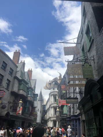 Media companies, like Universal Studios and Disney, extend cherished narratives by creating amusement parks for fans to visit and immerse themselves in the culture of their favorite stories. Pictured is the recreation of the Harry Potter movie franchise's Diagon Alley at Universal Studios Florida. Visitors embody a wizard with purchased wands and cloaks, dine in iconic restaurants, and go on adventures with familiar characters.