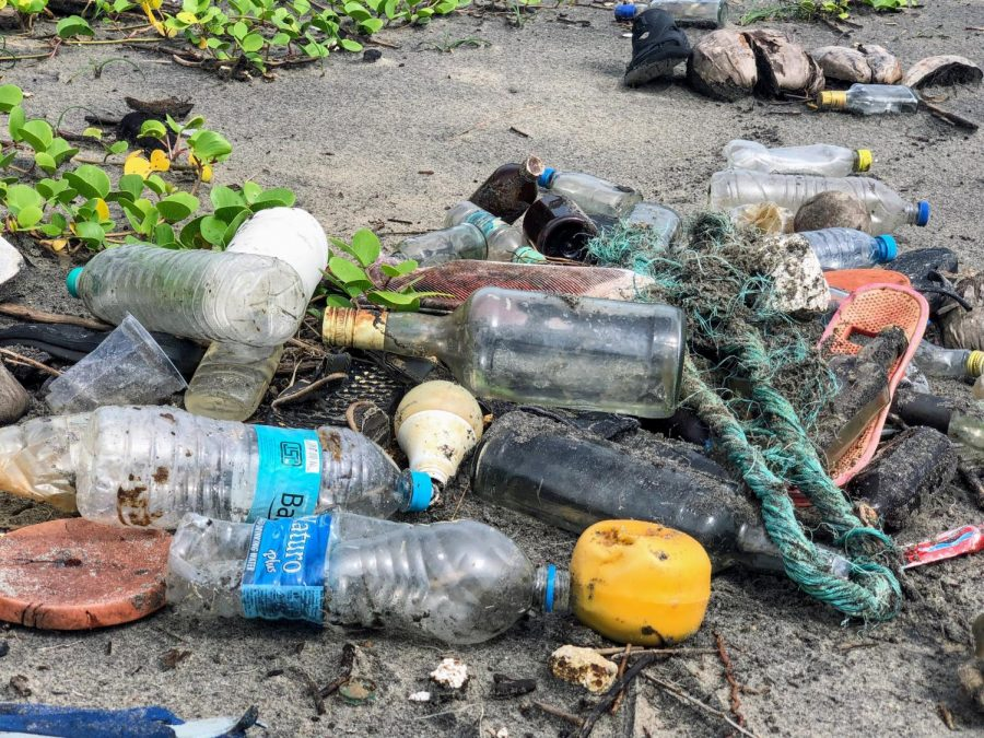 Our oceans are filled with plastic, much of it produced by large corporations. In 2021, there are around 46,000 pieces of plastic in every square mile of ocean.