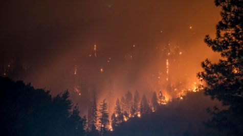 Here is Klamath National Forest, in Yreka, California, on fire during last year